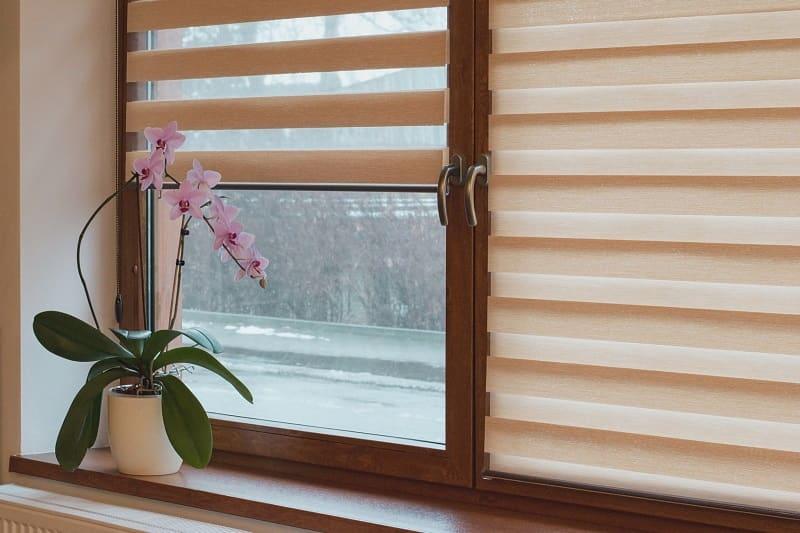 okna mahoniowe